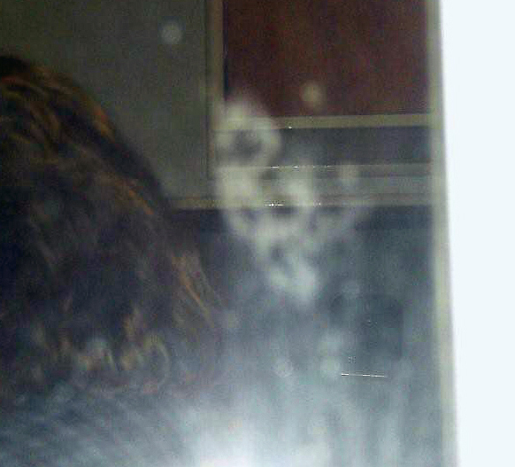 paranormal photo, false positive, pareidolia example, lens flare, New Zealand Strange Occurrences Society